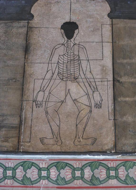 thai orvoslás diagramm